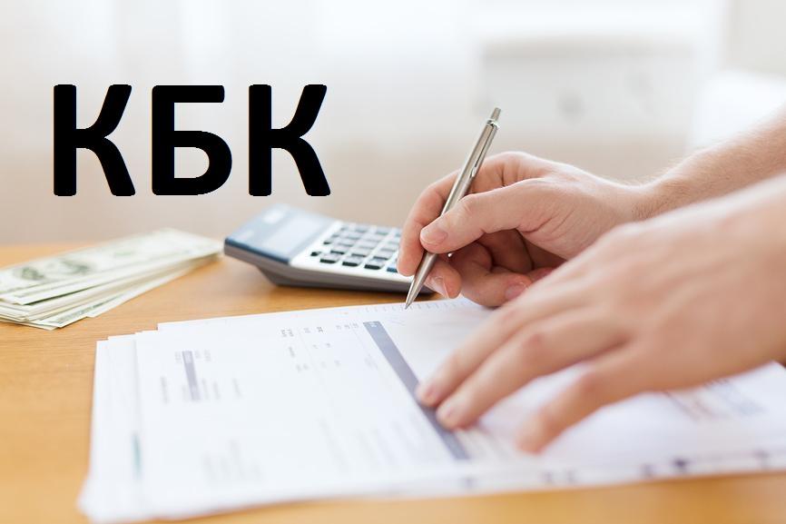 Что такое КБК для ИП и как используется при уплате налогов и взносов