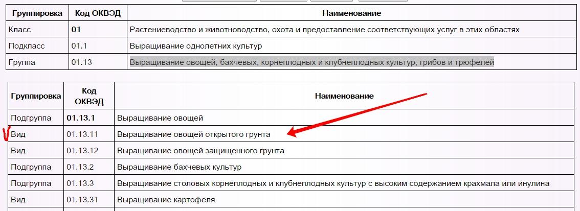 Оквэд по бухгалтерским услугам договор с фельдшером по предрейсовым осмотрам
